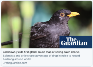 Global Soundmap During Lockdown (The Guardian, UK)